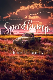 Speedbump-f